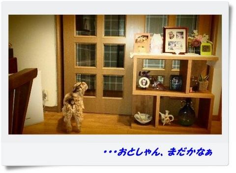 rps20130329_180059_294.jpg